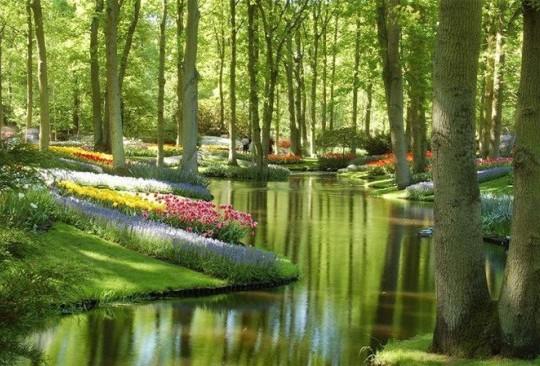 Keukenhof-Gardens-Netherlands